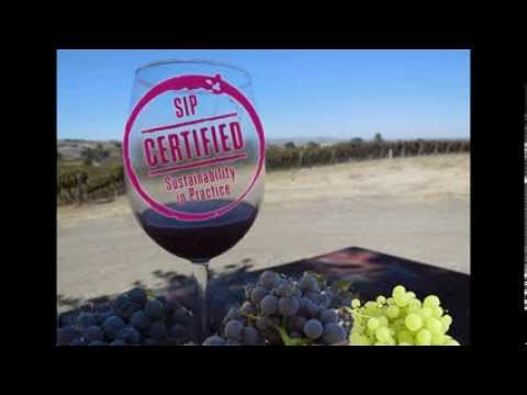 Sustainable Vineyards of California's Central Coast