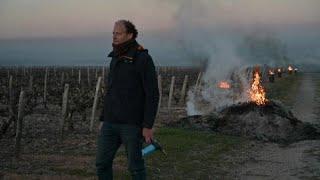 El temor de los agricultores franceses, las heladas de primavera que aniquilan las cosechas