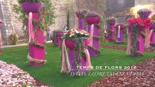 Temps де Flors, Girona 2016, Фестиваль, выставка Цветов в Жироне