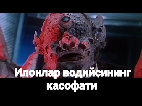 Илонлар водийсининг касофати узбек тилида •^• Ilonlar vodiysining kasofati uzbek tilida
