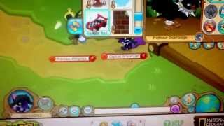 Strange Item Called The Race Car Bed On Animal Jam