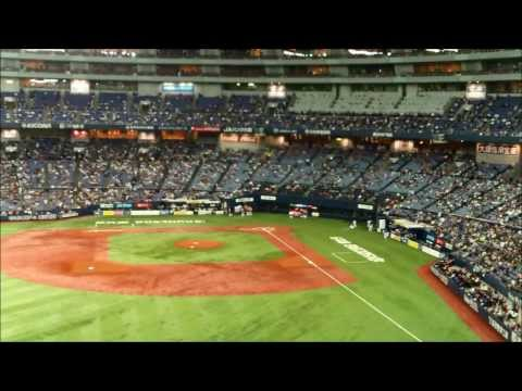 Baseball Game Experience in Japan
