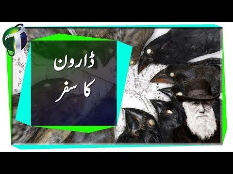 Origin Of Species Urdu Hindi