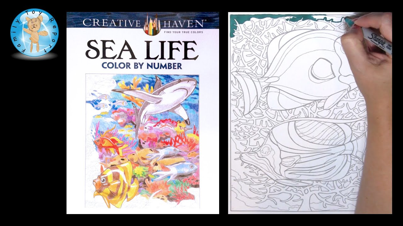creative haven sea life adult coloring book color by number two fish family toy report youtube - Color By Number Books