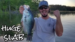 Huge Crappie Fishing catch at Clarks Hill