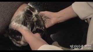 Shampoo ASMR | 탈모예방 올바른 샴푸 법