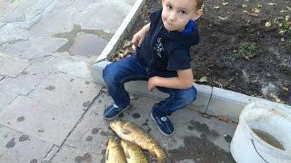 Рыбалка на поплавочную удочку (с ребенком)