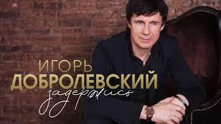Игорь Добролевский Задержись(Official Audio 2019)
