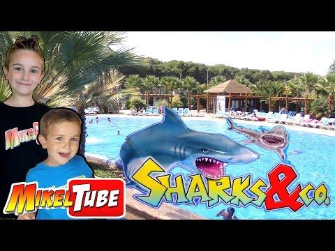 Reto Encuentra el Tesoro con Sharks & Co. en Tarragona