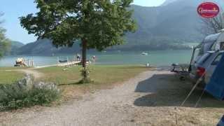 Camping  Wolfgangsee Birkenstrand