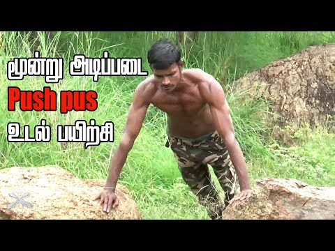 push up gym workout basic 3 exercise for home  [tamil]