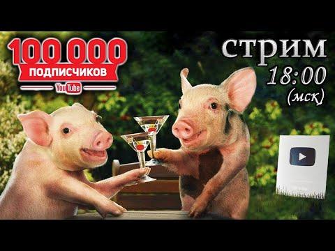 19.11.19 (вторник) Праздничный консилиум свиноводов
