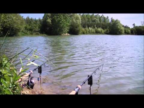 MAD Carp Fishing - Etang de la Livardière - Promo movie HQ.wmv
