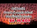 Jernih Banget Sp Ini Cocok Di Lokasi Manapun Dan Di Segala Musim  Mp3 - Mp4 Download