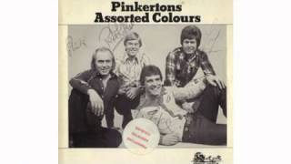 Pinkertons Assorted Colours - Yes I Understand