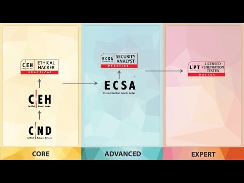 Certified Ethical Hacker (C|EH) V10 And C|EH (Practical) Launch | Jay Bavisi