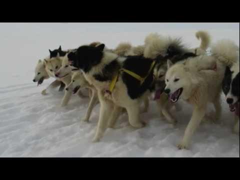 Winter Travel in Greenland