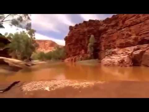 Nature   Ethiopian Highlands   Amazing Films