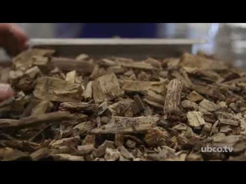 Could Mulch Reduce Greenhouse Gases?