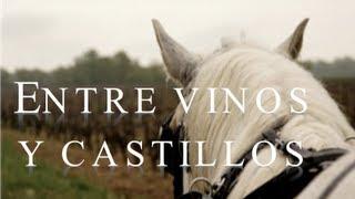 Entre vinos y castillos medievales - Valle Del Loira - Francia AXM