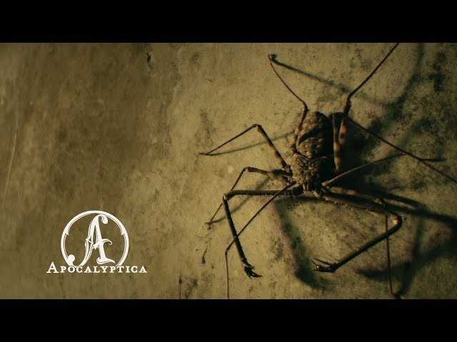Apocalyptica - En Route To Mayhem (Official Video)