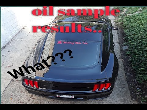 Repeat 2018 Mustang GT - Whipple, E85, and Piston Slap by