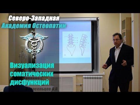 Желтые страницы Санкт-Петербург каталог компаний с