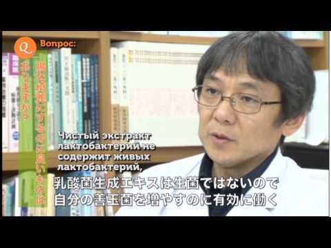 Кишечная палочка – причины и симптомы кишечной палочки