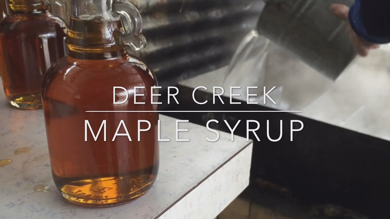 let u0027s make some maple syrup youtube