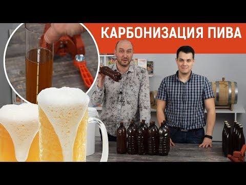 Домашнее пиво: оцениваем результаты брожения и обсуждаем способы карбонизации