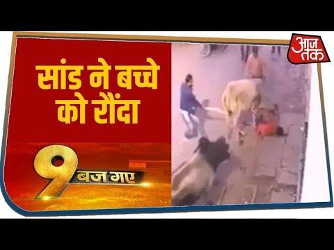 Jhansi: लाठी-डंडों से काबू में नहीं आए आवारा सांड,10 साल के बच्चे को रौंदा