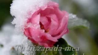 ERNESTO CORTAZAR - Stolen Kiss
