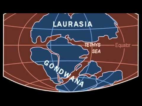 Alfred Wegener and the Continental Drift - YouTube