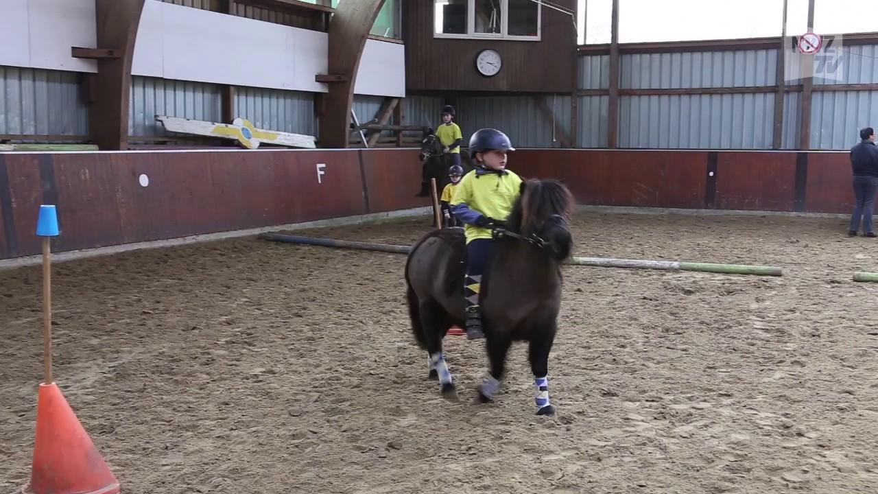 Ponyspiel