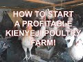 How to Start a profitable kienyeji chicken farm | Starting a profitable poultry farm in Kenya S01E02