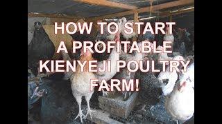How to Start a profitable kienyeji chicken farm  Starting a profitable poultry farm in Kenya S01E02