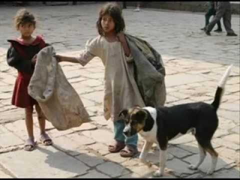 Resultado de imagem para fotos de crianças abandonadas