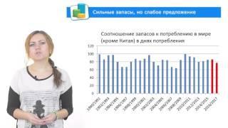 обзор рынка зерновых и масличных от ОДА УКРАИНА