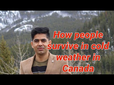 How Do People Survive In Cold Weather In Canada. Winter In Canada ( Urdu,Hindi,Punjabi )