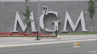 Lawsuit Filed For Girl Left Brain-Damaged After Electrical Shock At MGM National Harbor
