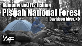 """W4F - Camping and Fly Fishing """"Pisgah National Forest"""" Davidson River, NC"""