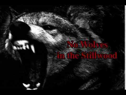 """""""No Wolves in the Stillwood"""""""