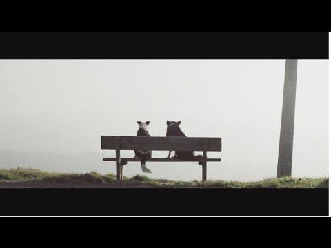 Luca Schreiner - Missing feat. Kimberly Anne