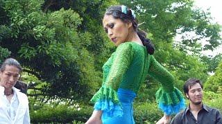バタデコーラがあざやかなフラメンコ(Flamenco) KoKoKa2016 thumbnail