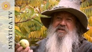 MYSTICA.TV: Wolf-Dieter Storl - Der Apfel