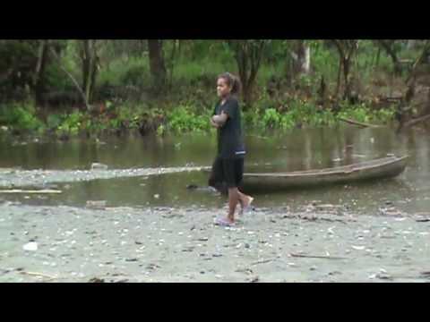 The Tenaru (Alligator Creek)