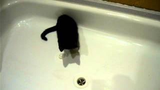 Viky objevila sítko do odpadu ve vaně:)