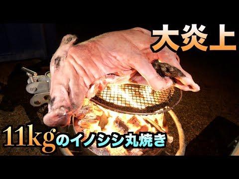 11kgのイノシシを豪快に丸焼きにしたら大炎上になった!!!!