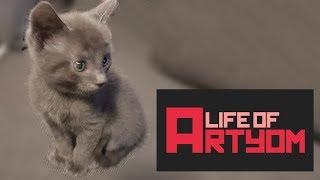 life-of-artyom