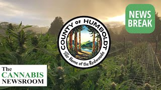 Humboldt County Bans Commercial Hemp Cultivation